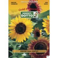 Dwarf Sunflower (Helianthus annuus) - Gold Seeds by Sementi Dotto 2.8gr