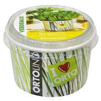 Cultivation Kit ORTOLINO Basil by Verdemax