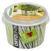 Cultivation Kit ORTOLINO Lemon Balm by Verdemax