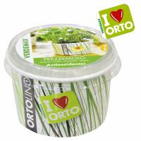 Cultivation Kit ORTOLINO Parsley by Verdemax