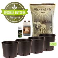 Autoflower Outdoor Grow Kit - 4 Pots