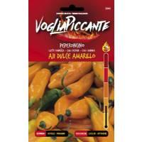 VogliaPiccante Pepper Seeds - Aji Dulce Amarillo