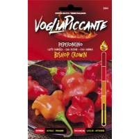 VogliaPiccante Pepper Seeds - Bishop Crown