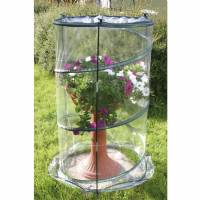 Verdemax - Pop-Up Anthurium Greenhouse - 70x110CM