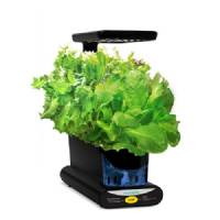 Aerogarden Miracle-Gro Led - Starter Herb Kit included - 24x13x38cm