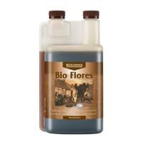 Canna Bioflores1LTR
