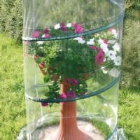 Verdemax - Pop-Up Anthurium Greenhouse - 70x110CM