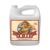 ADVANCED NUTRIENTS B52 5LTR