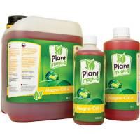 Plant Magic - Magnecal