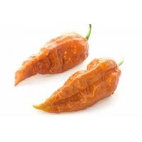 Bhut Jolokia Rust - 10 X Pepper Seeds