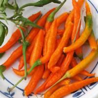 Thai Orange - 10 X Pepper Seeds