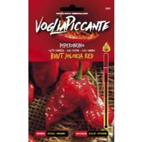 VogliaPiccante Pepper Seeds - Bhut Jolokia Red