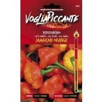 VogliaPiccante Pepper Seeds - Jamaican Orange