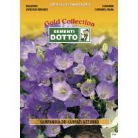 Bellflower Blue (Campanula carpatica)  - Gold Seeds by Sementi Dotto 0.45gr