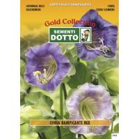 Cathedral Bells (Cobaea scandens) - Gold Seeds by Sementi Dotto 0.3gr