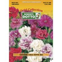 Chinese Carnation Double Flower Mix - Gold Seeds by Sementi Dotto