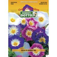 Convolvulus (Convolvulus tricolor) mix - Gold Seeds by Sementi Dotto 3.4gr