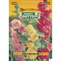 Hollyhock ( Althea rosea) - Gold Seeds by Sementi Dotto 0.7gr