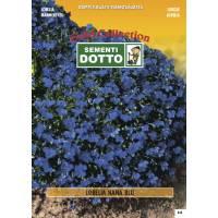 Lobelia Dwarf Blue (Lobelia erinus) - Gold Seeds by Sementi Dotto - 0.16gr