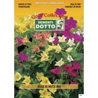 Marvel of Peru (Mirabilis jalapa)mix - Gold Seeds by Sementi Dotto 4.6gr