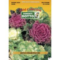Ornamental Cabbage Mix - Gold Seeds by Sementi Dotto