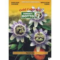 Passion Flower (Passiflora coerulea)  - Gold Seeds by Sementi Dotto 0.16gr