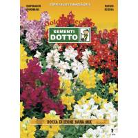 Snapdragon Dwarf (Antirrhinum majus) Mix - Gold Seeds by Sementi Dotto 0.7gr