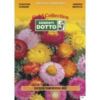 Strawflower (Helichrysum bracteatum) - Gold Seeds by Sementi Dotto 1.3gr