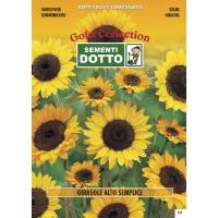 Sunflower (Helianthus Annuuns)  - Gold Seeds by Sementi Dotto - 8gr