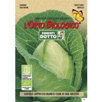 GIANT CABBAGE -  Bio Garden Seeds by Sementi Dotto