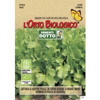LETTUCE OAK LEAVES 0,1gr- Bio Garden Seeds by Sementi Dotto