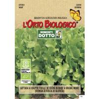 Organic Seeds Lettuce Four Seasons