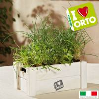 Cultivation Kit Verdemax Easyorto  - Rocket and Chive