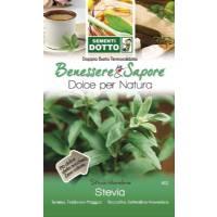 Stevia Seeds ( Stevia Rebaudiana) by Sementi Dotto